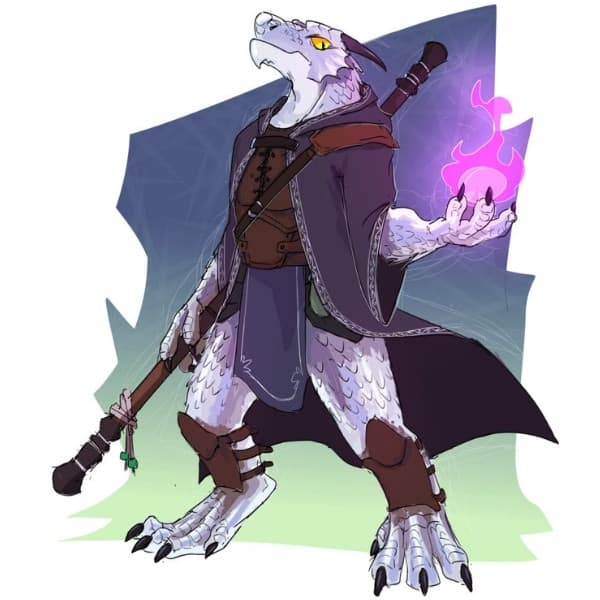 Dragonborn Holding A Fireball