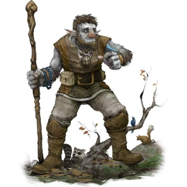 Firbolg 5e With Staff